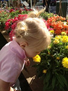 Our two-year old loves to smell all the flowers at the Saratoga Farmer's Market!